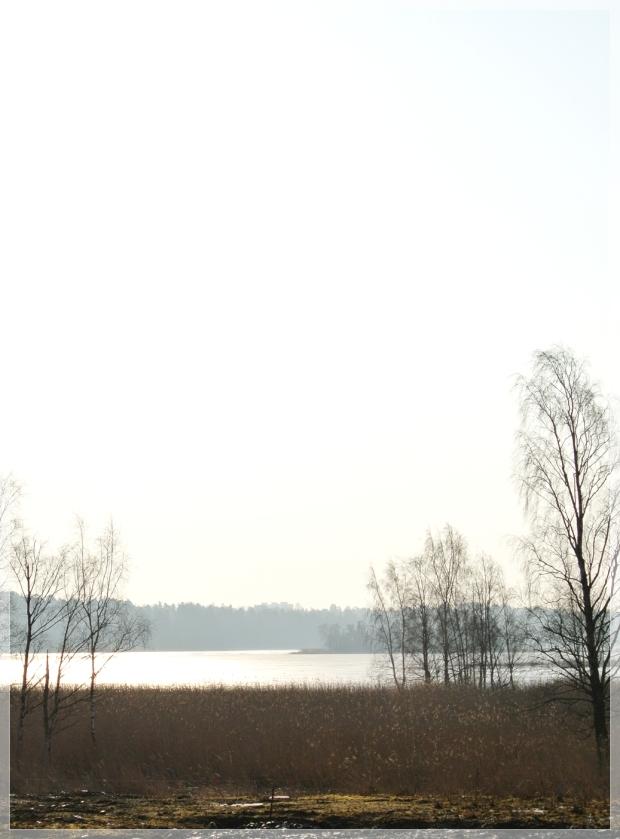 Finland Kirkkonummi Sarvvik nature