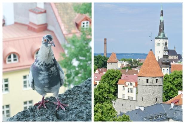 Tallinna, Viro, Estonia