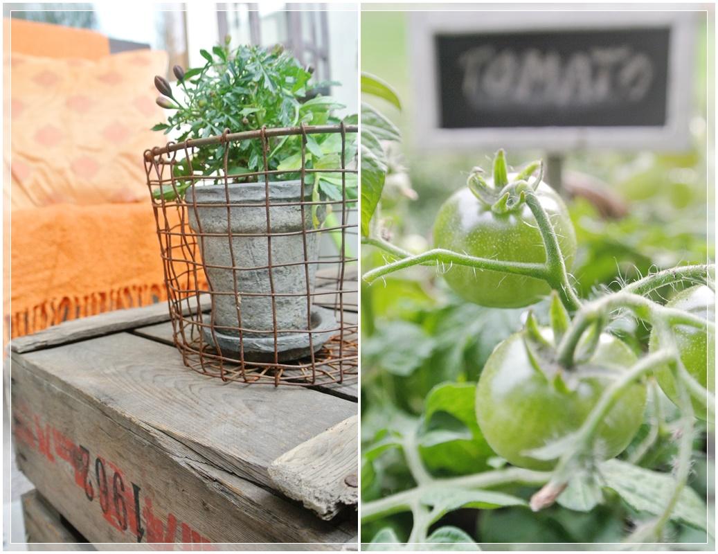 parveke, balcony, syysparveke, garden, puutarha