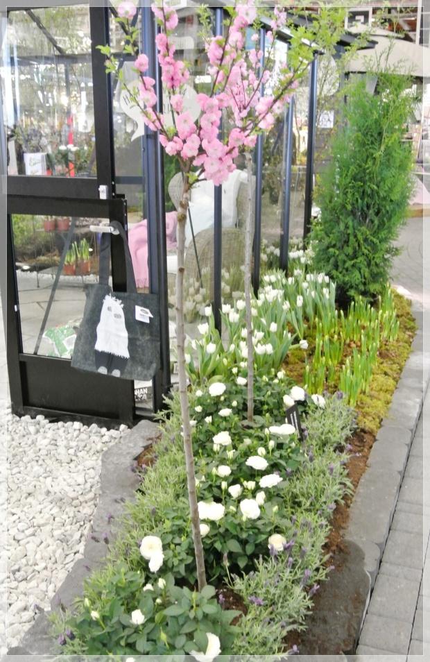 Kevätmessut, puutarha, tulppaanit, garden